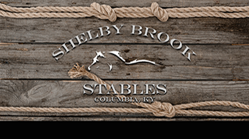 shelby_brook_back_1smallweb.png